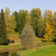 Autumn landscape — Stock Photo #3410809
