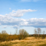 Spring landscape — Stock Photo #3464604