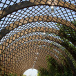 Stock Photo: Inside pergola