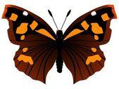 European Beak or Nettle-tree Butterfly — Stock Vector