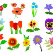 Royalty-Free Stock Imagem Vetorial: Vector collection of beautiful flowers
