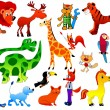 Set of funny animals - Stock Vector