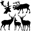 Stock Vector: Set of different kind of deer