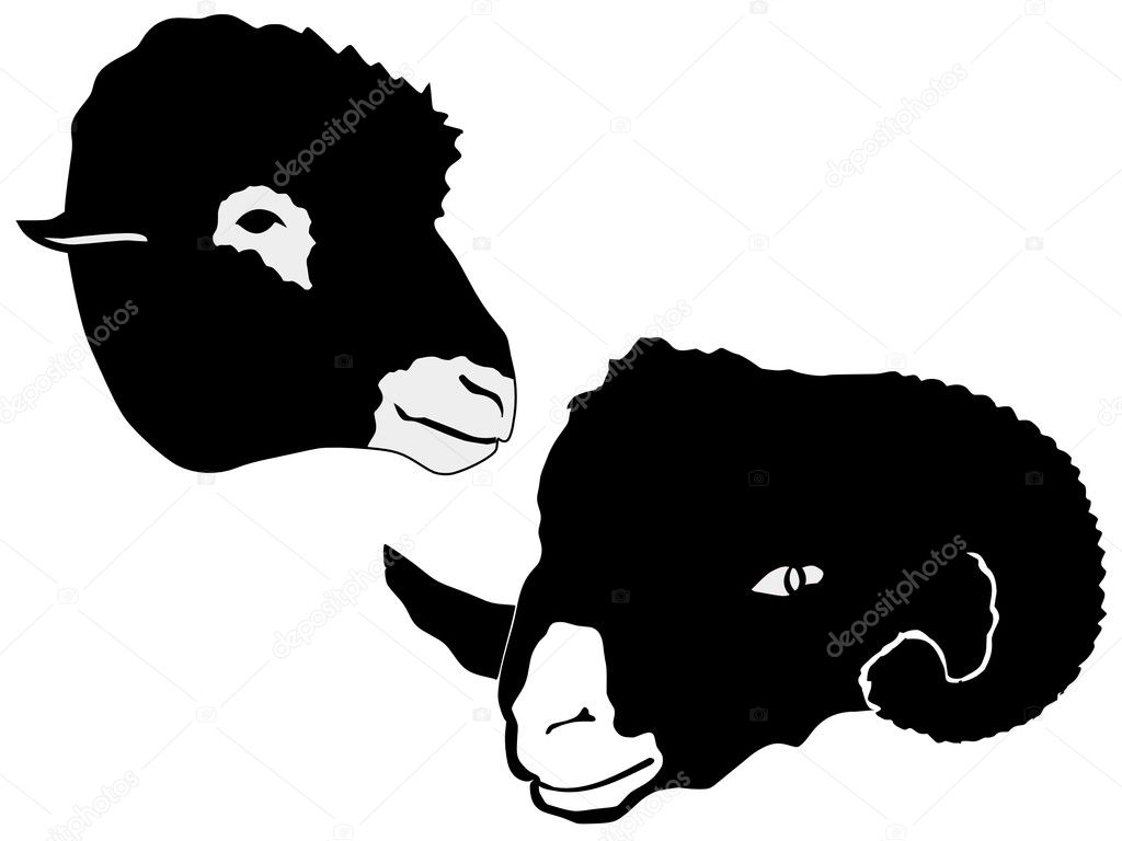 Sheep Vector Silhouette Silhouette of Sheep — Vector