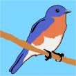 Stock Vector: Bluebird
