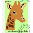 Vector stamp with giraffe - Stock Vector