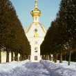 Winter's garden in Peterhof — Stock Photo