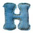 One letter of jeans alphabet — Foto de Stock
