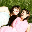 Stock Photo: Beautiful happy young girls on the grass