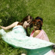 Beautiful happy young girls on the grass — Stok fotoğraf