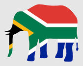 Elephant with flag of south Africa — Stock Photo