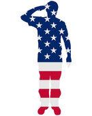 Amerikanska salut — Stockfoto