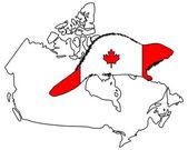 Canadian Beaver — Stock Photo