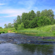 River landscape — Stock Photo #3394186