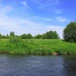River landscape — Stock Photo