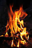 Fire on night — Stock Photo