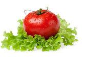 Rouge tomate juteuse avec litho de la salade — Photo