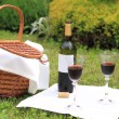 Picnic with wine — Stock Photo