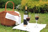 Picnic with wine — Stock Photo