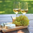 Cheese, grapes and white wine — Stock Photo