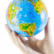 Stock Photo: Globe in hand