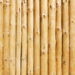 Wall of logs — Stockfoto