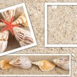 Background in the form of sand and shell — Stock Photo