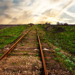 Old rusty rails,the railway leaving afar — Stock Photo #3095123