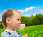 The boy with a dandelions — Stock Photo