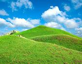 緑の草に覆われた丘 — ストック写真