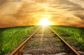 Old rusty rails - the railway leaving afar — Stockfoto