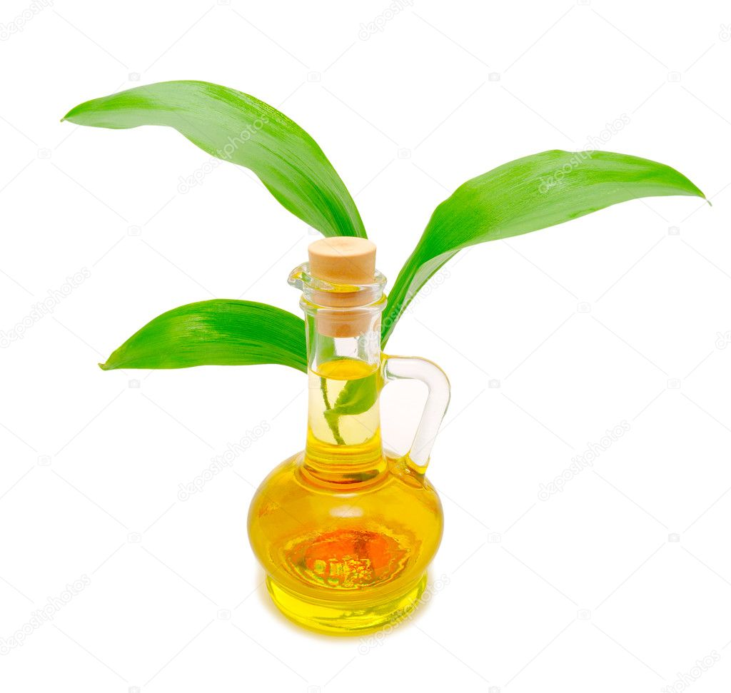 Bottle with vegetable oil and a green sprout behind — Stock Photo #3901089