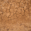 Royalty-Free Stock Photo: Background in the form of the cracked clay wall