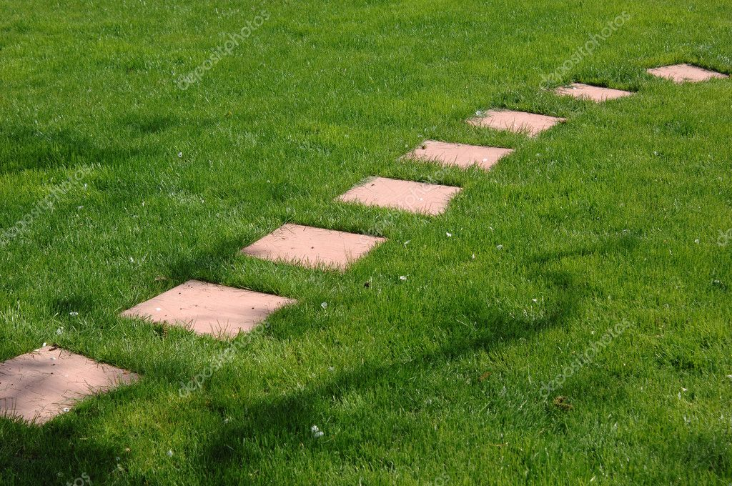 The Stone Block Walk Path In The Park With Green Grass