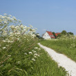 Gravel path leading to a village - Stock Photo