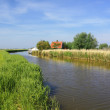 Water canal between fields in summer — Stok fotoğraf