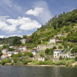Stock Photo: Banks of Douro River