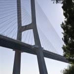 Vasco da Gama Bridge — Stock Photo #3860865