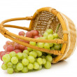 Stock Photo: Wattled basket with grapes isolated