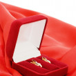 Gold earrings in a red box - Stock Photo