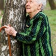 Stock Photo: Portrait of the old woman