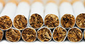 Cigarettes isolated on white background — Stock Photo