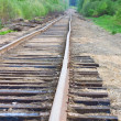 Stock Photo: Old railway track in forest
