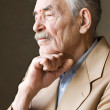 Old man with moustaches in a jacket — Stock Photo