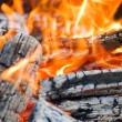 Very hot campfire close up - Stockfoto