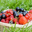 Ripe berries in a basket — Stock Photo