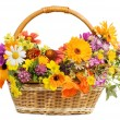Beautiful flowers in a basket  isolated on white — Стоковая фотография