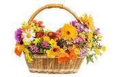 красивые цветы в корзине, изолированные на белом фоне — Стоковое фото