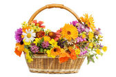 Beautiful flowers in a basket isolated on white — Photo