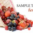 Ripe berries in a basket isolated on white background — Stock Photo